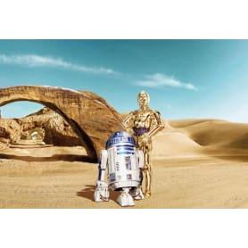 Фотообои Komar STAR WARS Lost Droids 8-484 368х254 см