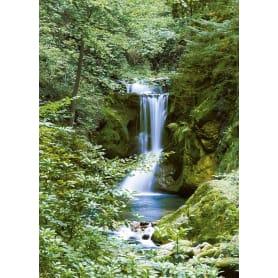 Фотообои W+G Waterfall in Spring 00364WG 183х254 см