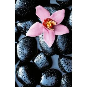 Фотообои W+G Giant Art Stone Orchid 00666WG 175х150 см