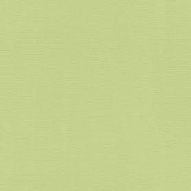 Обои флизелиновые Rasch Hyde Park зелёные 0.53 м 411829