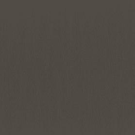Обои флизелиновые Rasch Hyde Park коричневые 0.53 м 411935