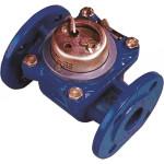 Счетчик холодной воды Тепловодомер ВСХНд-50 турбинный 200 мм P111-050-4