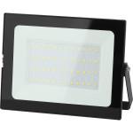 Прожектор светодиодный Эра LPR-021-0-65K-050 Стандарт 50 Вт IP65 черный