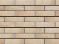 Клинкерная плитка фасадная Cerrad Elewacja Retro Brick salt 245x65x8 мм 0.6 м2
