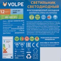 Светильник светодиодный накладной Volpe ULW-Q221 IP65 12 Вт 960 Лм
