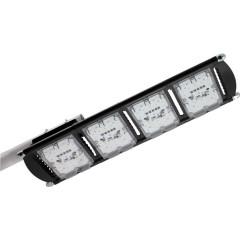 Уличный светодиодный светильник ALB ДКУ 29-160-501