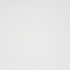 Обои под покраску виниловые на флизелиновой основе фактурные антивандальные МИР 07А-020 1.06x25 м 155 г/м2