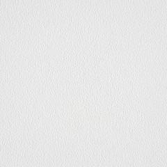 Обои антивандальные Мир 07А-036 виниловые на флизелиновой основе 1.06x25 м