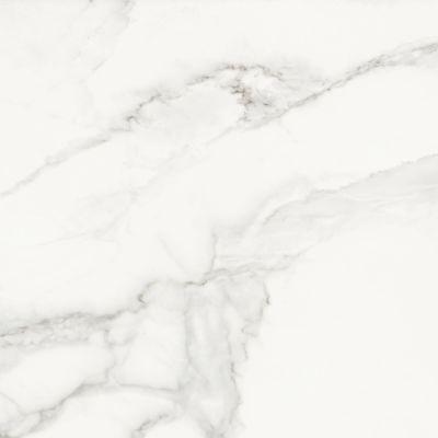 Фото - Керамогранит Cracia ceramica Casa Blanca 600x600x10 мм белый 1.44 м2 керамогранит vives ceramica world flysch lesnaya sp gris 17 5х20 см