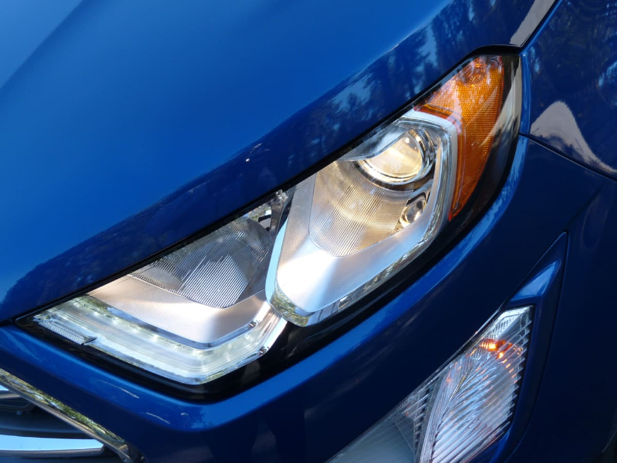 The eyes of a Bengal Ecosport
