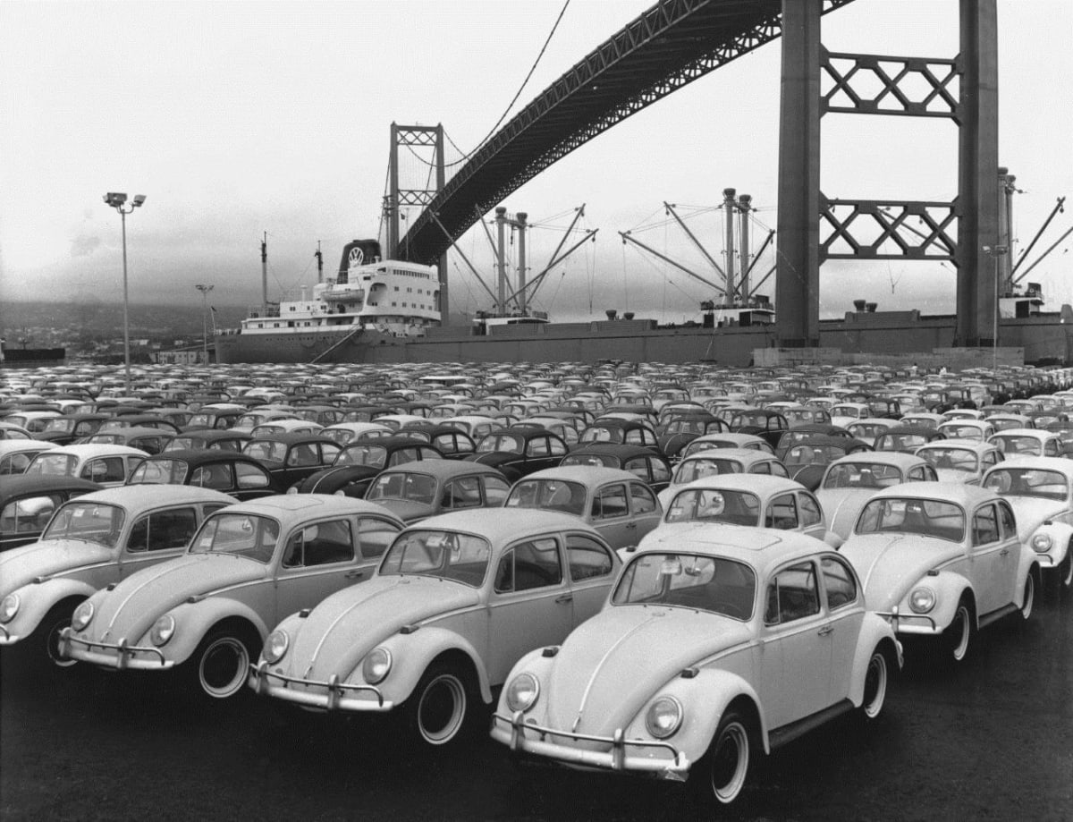 A collection of Volkswagen Beetles