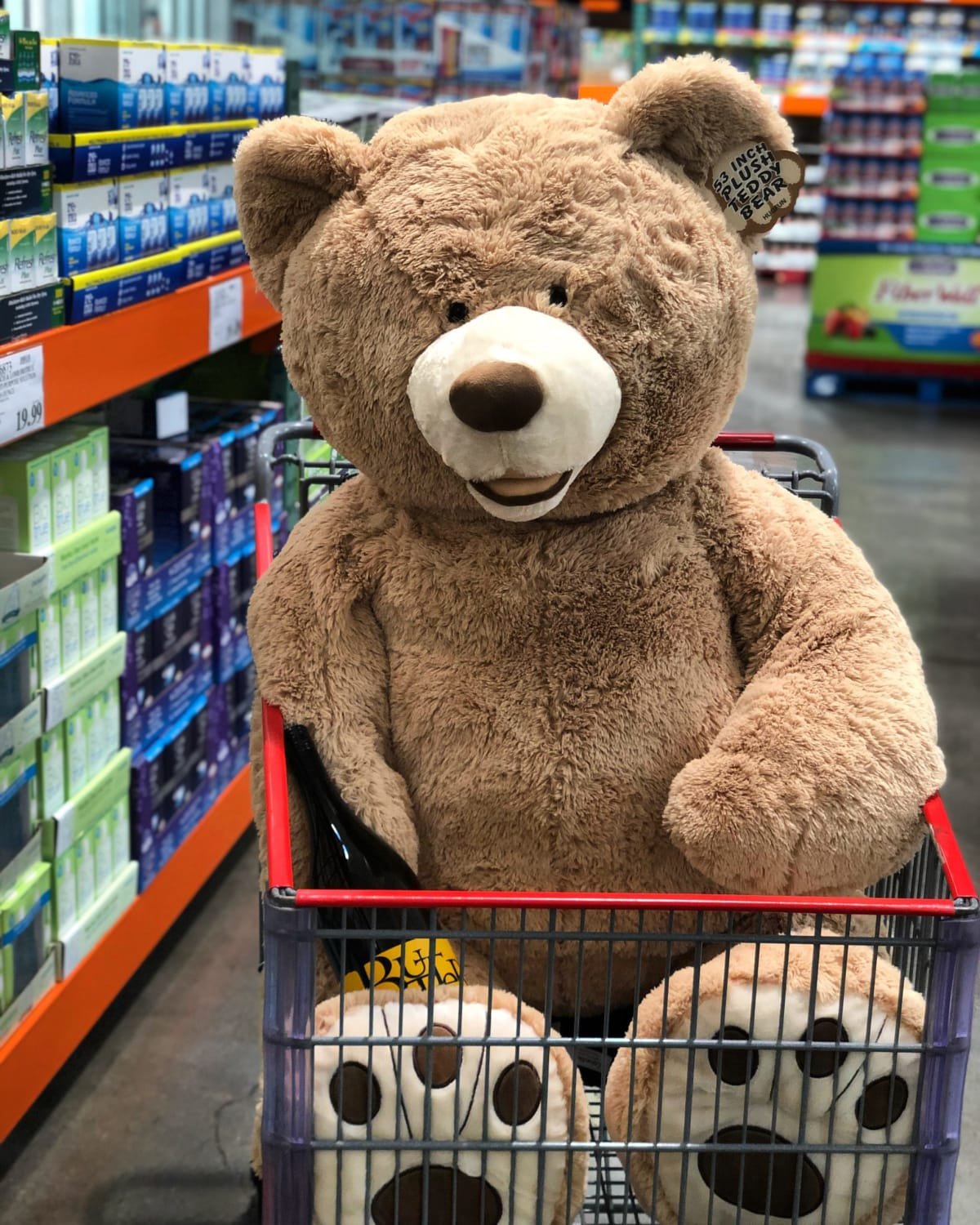 Ted was ready for a ride in something a bit more comfortable…