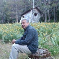 Daoud M.