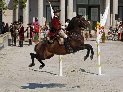 Equestrian Show Queluz
