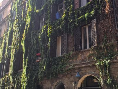 You will see this ivy-coated house