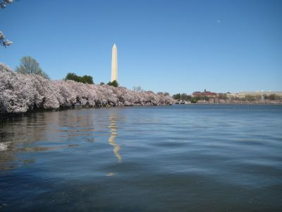 Tidal Basin / Washington Monument