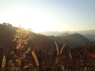 San Benedetto Hills