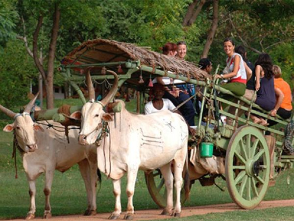 Habarana Village Tour