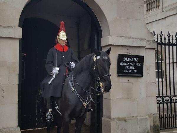 Atlı Kraliyet Korumaları