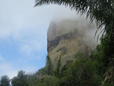 Monkey face at Pedra da Gávea