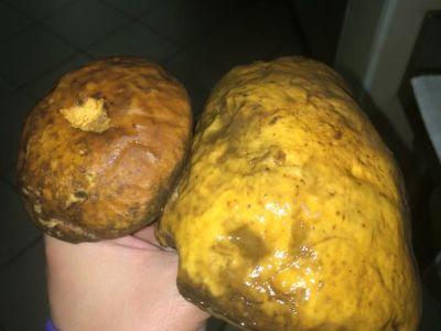 Big Big Mushrooms