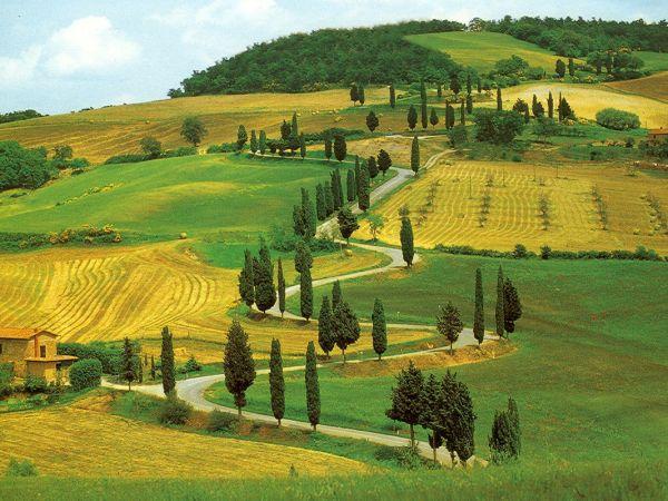 Hills around Florence