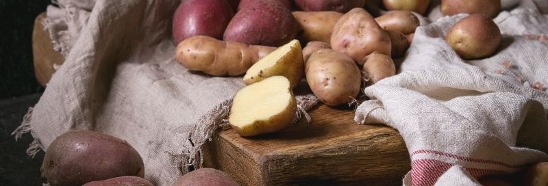 slika Krompir Bjelovar