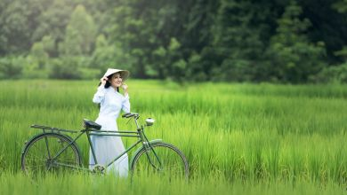 Photo of ベトナム出張や旅行前に知っておこう!日本人がベトナムで注意すべきポイント②食事・文化編