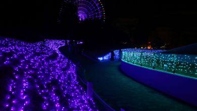 Photo of Lễ hội thắp đèn Wonder experience tại tháp Mặt trời ở Osaka