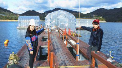 Photo of Trải nghiệm câu cá trên hồ Tojoko tại thành phố biển Hyogo