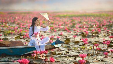 Photo of 【ベトナム人の訪日旅行事情】〜ベトナム人に日本への旅を選んでもらうために〜