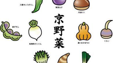 Photo of Kyoyasai – rau củ truyền thống chỉ có thể thưởng thức ở Kyoto
