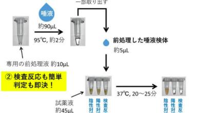Photo of Nhật Bản phát triển kĩ thuật phân tích kết quả nhiễm virus corona chỉ trong 25 phút