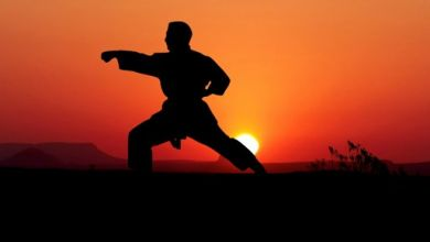 Photo of Karate trong võ đạo Nhật Bản