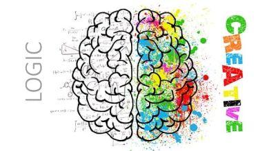 Photo of Mách bạn cách chăm sóc bộ não hiệu quả (kì 1)