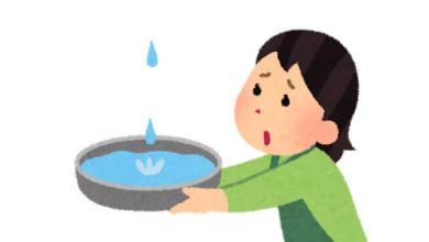 Photo of Học tiếng Nhật: Phân biệt cặp từ gần nghĩa こぼれる và もれる