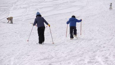 Photo of 5 trải nghiệm không nên bỏ lỡ vào mùa đông Nhật Bản