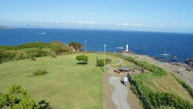 Photo of Thư giãn giữa thiên nhiên, tận hưởng phong cảnh và ăn cá ngừ tại đảo Jogashima