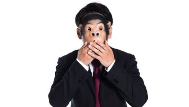 Photo of Tục ngữ tiếng Nhật trong giao tiếp – Chủ đề động vật (kì 6)