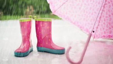 Photo of Dự báo thời điểm bắt đầu mùa mưa trên toàn nước Nhật năm 2021