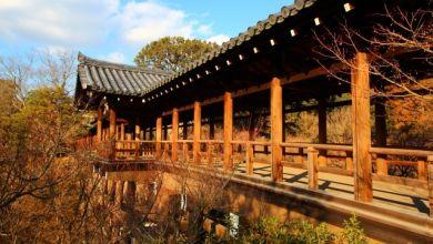 Photo of Chiêm ngưỡng sắc thu tại ngôi chùa cổ nhất và lớn nhất Kyoto – Chùa Tofukuji