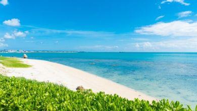 Photo of Hè này tới thăm hòn đảo xinh đẹp Senaga ở Okinawa