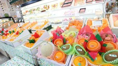 Photo of Thạch tươi làm từ hoa quả chất lượng cao củaSugiyama Fruit, Shizuoka