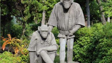 Photo of Thăm quan sở thú Tennoji – ốc đảo của thành phố Osaka năng động