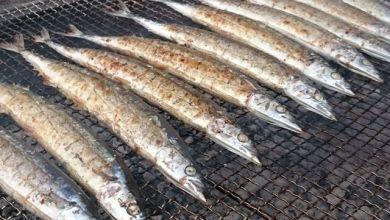 Photo of 3 lễ hội ăn cá sanma nướng miễn phí