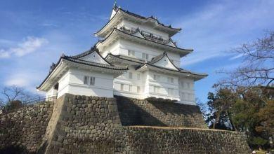 Photo of Thành Odawara – điểm thăm quan không thể bỏ qua ở Kanagawa