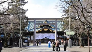Photo of Đền Yasukuni – điểm ngắm hoa anh đào nổi tiếng Tokyo
