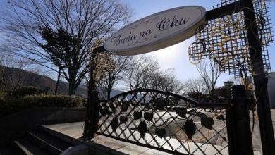 """Photo of Thưởng thức nho và rượu vang nổi tiếng của Yamanashi ở """"Budo no Oka"""""""