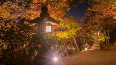 Photo of Top 10 điểm ngắm lá đỏ tuyển chọn khu vực Kyushu năm 2020