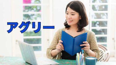 Photo of [Làm chủ Katakana] アグリー nghĩa và cách dùng